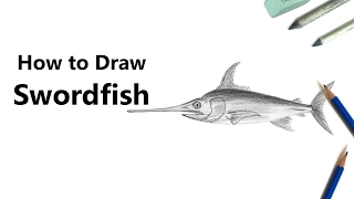 How to Draw a Sword Fish with Pencils [Time Lapse]