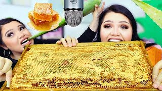 We Tried ASMR.. Giant Raw Honeycomb, Aloe Vera +more (Sticky Crunchy Sounds)
