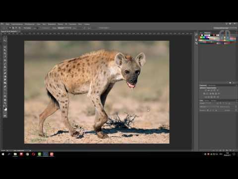 Как создать PDF презентацию в Фотошопе