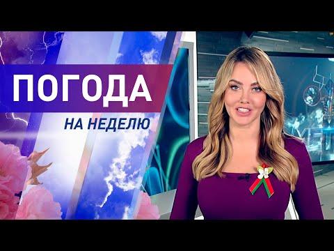 Погода на неделю с 6 по 12 июля 2020. Прогноз погоды. Беларусь | Метеогид