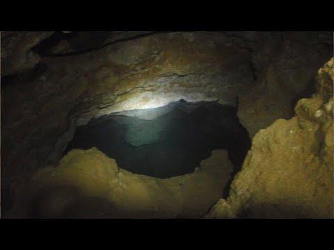 видео: Ученые обнаружили пещеру, которая была изолирована 5 МИЛЛИОНОВ лет, то, что они там нашли поражает