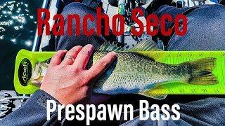 Bass Fishing at Rancho Seco