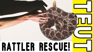 Gambar cover Rattlesnake Relocation [w/ Briana & Julian Cisneros]