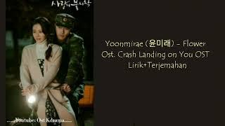 Download Lirik + terjemahan Yoon mi rae (윤미래) - Flower ~ Crash Landing on You OST Part 2