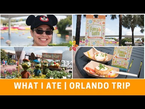 Vegan Eats During My Orlando/Disney Trip | Vlog Series #13