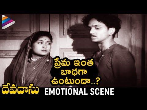Savitri & ANR Emotional Scene | Devadasu Telugu Movie | ANR | Mahanati Savitri | Telugu FilmNagar