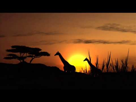 Royalty Free Music  African