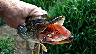 Рыбалка 2020 КАКИЕ ЗЛЫЕ ПОКЛЕВКИ ЩУКА ЛЮБИТ ЭТУ ПРИМАНКУ РЫБАЛКА НА ЩУКУ В ИЮНЕ