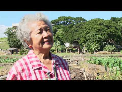 PBS Hawaii - HIKI NŌ Episode 512 | Waipahu Intermediate School | Grandma Espy