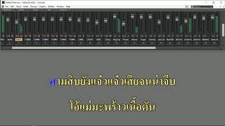 สามสิบยังแจ๋ว - สามช่า2019 karaoke sonar