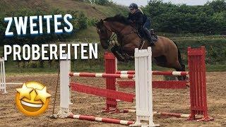 Ich probiere das Pferd zum ZWEITEN mal aus 🤩|Wird es mein neues Pferd 🧐| Fay&Caba