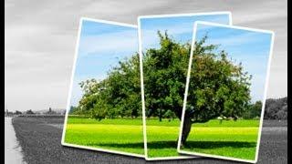 Рамки для фотографии в Фотошопе(Рамки для фотографии в Photoshop CS5. Приятного просмотра! Группа Вконтакте: http://vk.com/fotoneck Курс по фотошопу - http://gpcl..., 2012-11-22T15:57:51.000Z)
