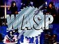 wasp arena of pleasure drum cover ( crimson drums )