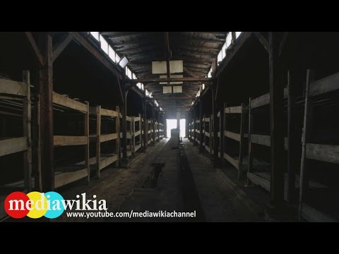 Auschwitz Birkenau - The Holocaust Concentration Camps