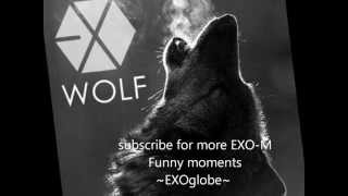 EXO 늑대와 미녀 (Wolf) [MP3/DL/INSTRU] (Korean/Mandarin Ver.)