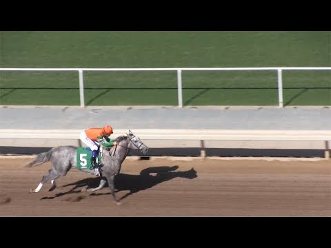 Freakish 3-year-old filly Unique Bella wins LA Woman Stakes thumbnail