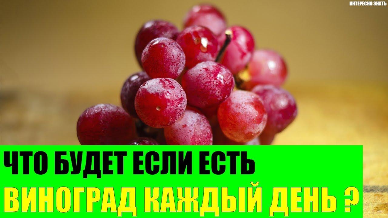 Что будет если есть виноград каждый день?
