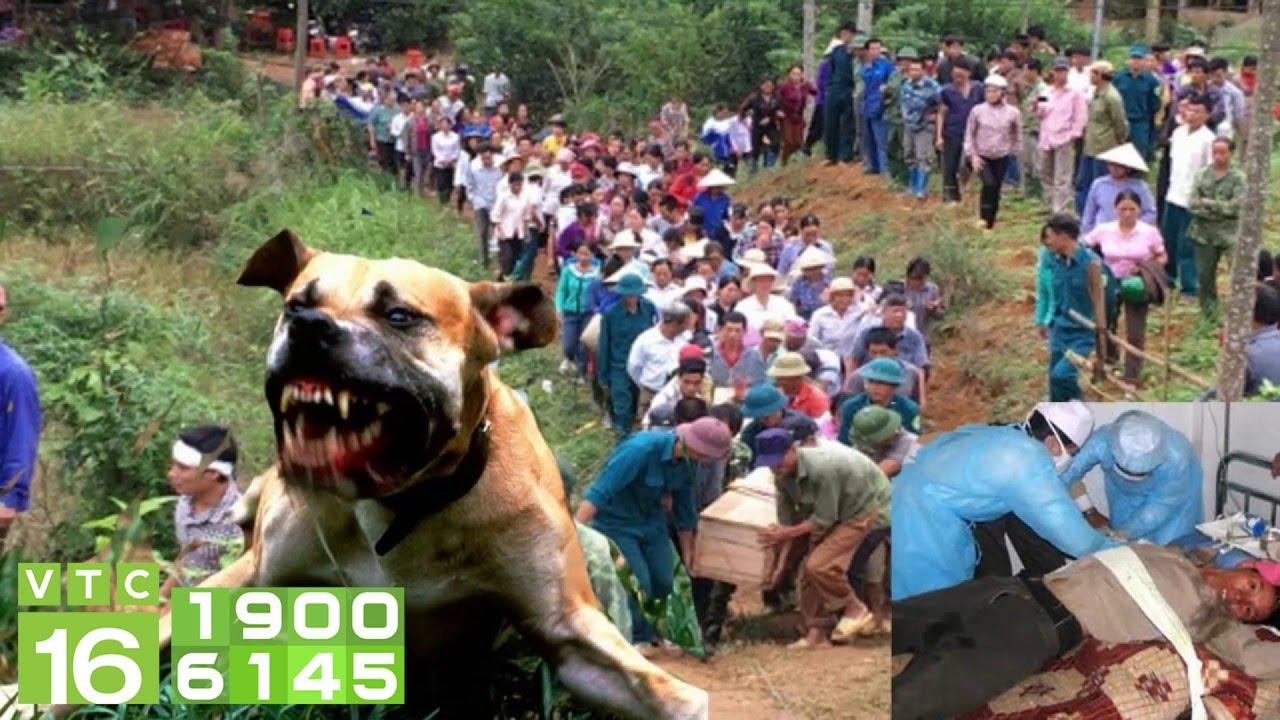 Bị chó dại cắn, 2 người trong 1 gia đình tử vong   VTC16