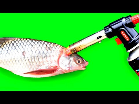 Fish VS Gas Torch | Cooking Fish | SS Creative ||