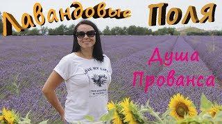 Орёл и решка в Провансе. Что делать  Лаванда в провансе!Lavender fields!Champs de lavande!