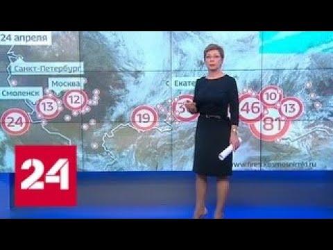 """""""Погода 24"""": воздух в Москве впервые в этом году прогрелся выше 20 градусов - Россия 24"""