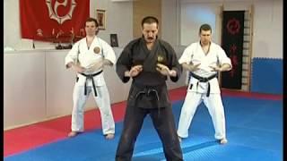 Школа Рукопашного Боя - Урок 1 - Основные Действия