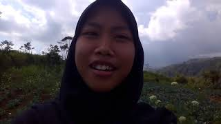 XII SCIENCE 1 TRAVEL VLOG : BAGAS ,FAISAL AND INDA GOES TO SHELTER FOREST