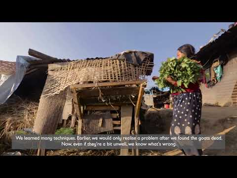 JICA Nepal Livelihood Recovery Program.