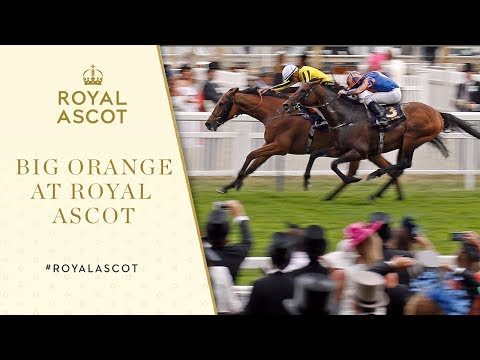 Royal Ascot 2017 | Big Orange edges thrilling Gold Cup finale