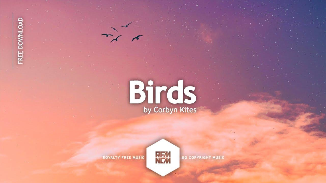 Free Background Music No Copyright Instrumental [Birds - Corbyn Kites] Vlog Music For Video Editing