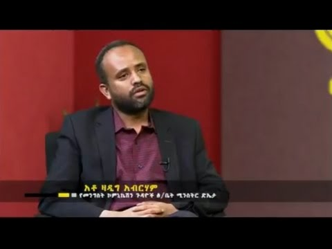 Ethiopia: Interview with Deputy Minister of Communication Affairs Office Zadig Abraha - Fit le Fit