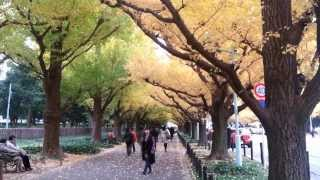 Pt 1-1 (S) Gingko Avenue Tokyo Song Sukiyaki by Blue Diamonds on Mon 25 Nov 2013 482MB.