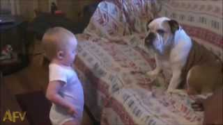 Funny Dog And Baby Talking