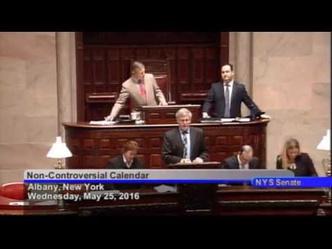 New York State Senate Session   05 25 16
