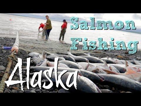Salmon Fishing in Dillingham Alaska