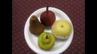 Mdg 3117 Differernt Kinds Of Pears: Bartlett, Asian, Red, & Apple Pear