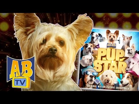 Air Bud TV - Pup Star SONG | I Believe In You | Children's Songs | Sing Along | Pup Star Songs