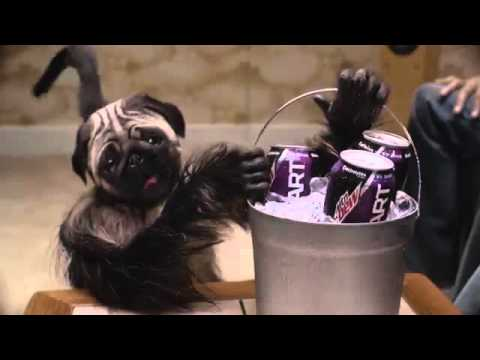 Pug monkey baby super bowl commercial 🙈