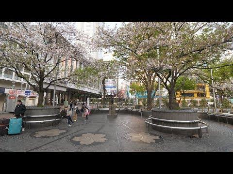 【4K】Shibuya on Saturday morning