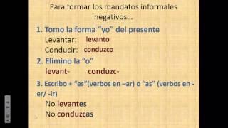Chapter 2: Los mandatos formales y informales