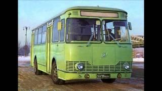Роза -  Автобус