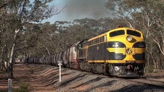 Australian Trains: S Class Leading El Zorro Grain at Tarnagulla.  Fri 18/05/12