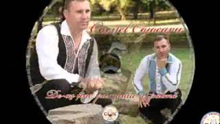 Cornel Cojocaru - Totdeauna fruntea sus (Official Audio) NOU