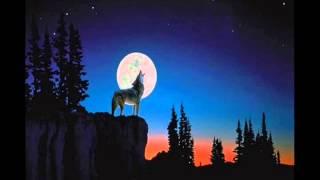 Wild wolf howling sound effect