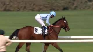 Vidéo de la course PMU GODOLPHIN MILE