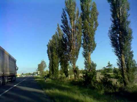 Знакомства Одесса. Бесплатный сайт знакомств онлайн в Одессе