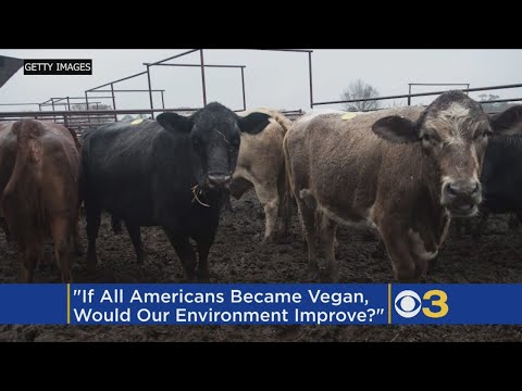 What If All Americans Went Vegan? Study Finds Mixed Results