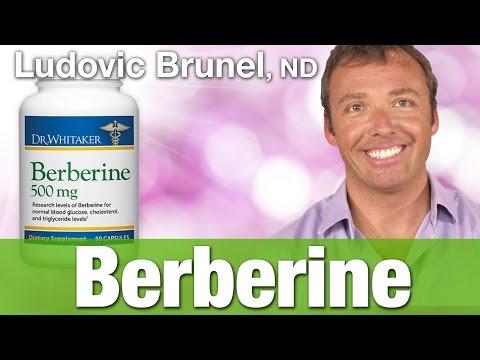 Preferred Nutrition Berberine With Dr. Ludovic Brunel