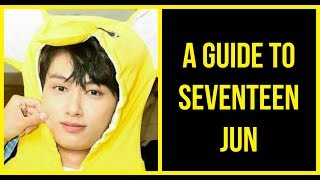 👉A(n) (Un)helpful Guide To Seventeen Jun👈