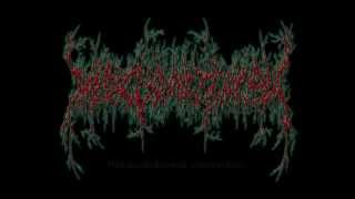 Medic Vomiting Pus debut full length sample